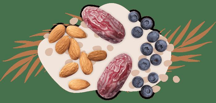 workdayenergy-dates-almonds-blueberries-snack