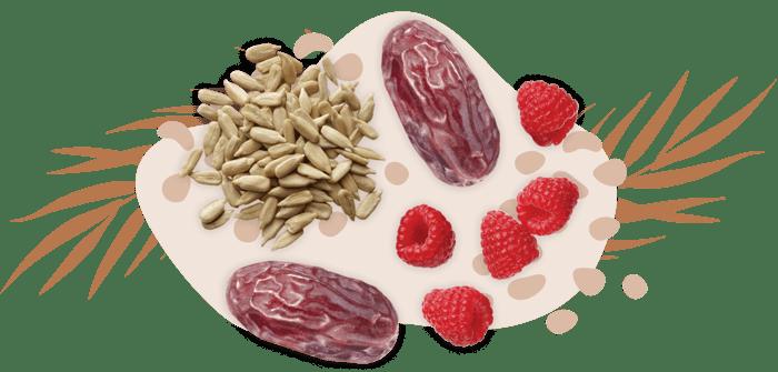 workdayenergy-dates-seeds-raspberries-snack